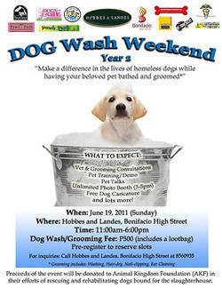 Dog Wash Weekend