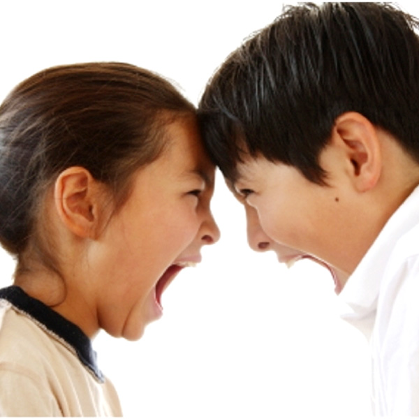 Playing Referee: How to Settle Fights Between Siblings