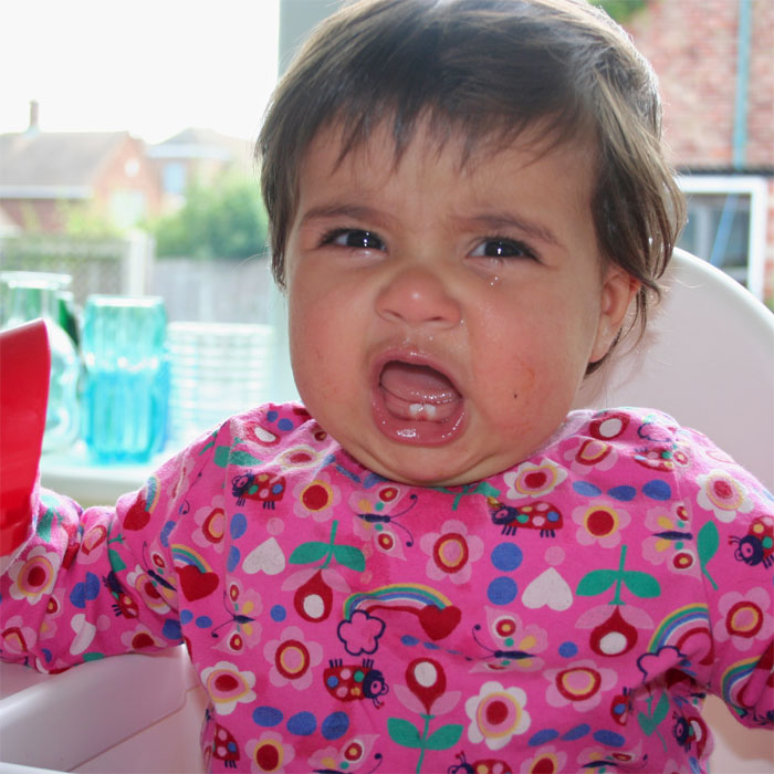 Dealing with your Toddler's Tantrums : Real Moms Speak Out