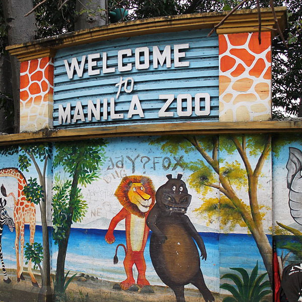 Top of The Morning: Manila Zoo Is Up For Renovation