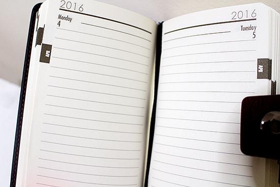 2016 Pocket Diary Daily