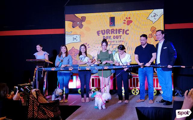 B Hotel Quezon City Is Now Pet Friendly Spot Ph