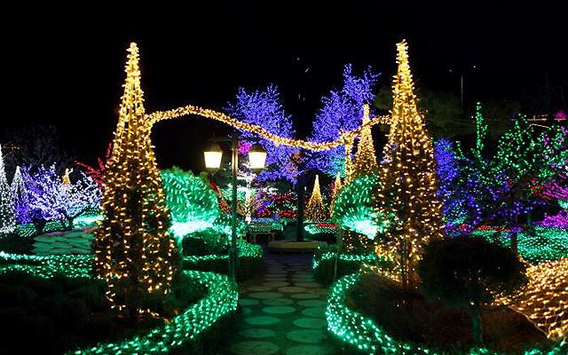 Christmas In Korea.See The Colorful Christmas Lights Display On Herb Island