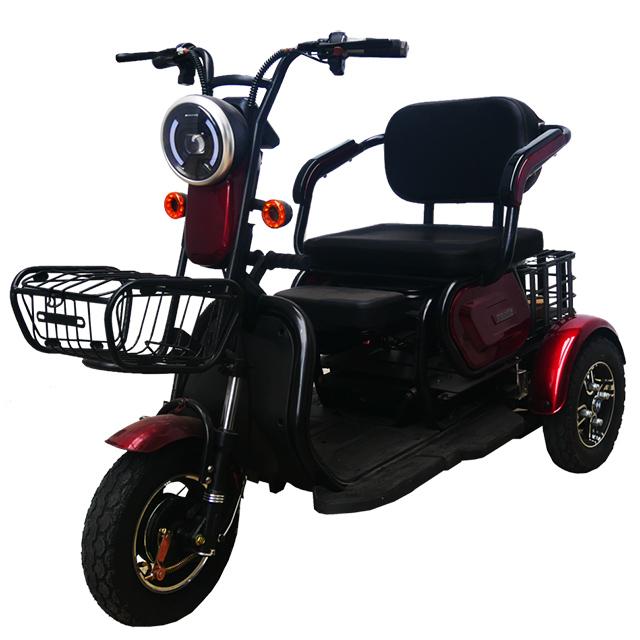 Gogo E-Bikes Trike