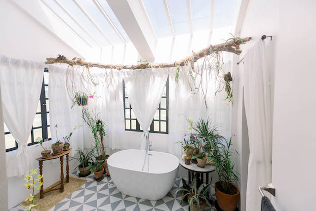 tub surrounded with orchids