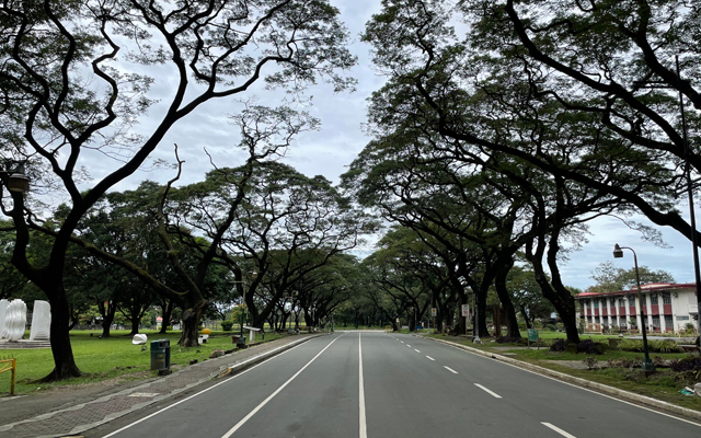 University of the Philippines - Diliman Campus