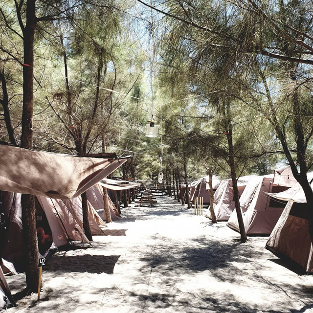 Crystal Beach Resort features a campsite where you can set up a tent amid rows of pine trees