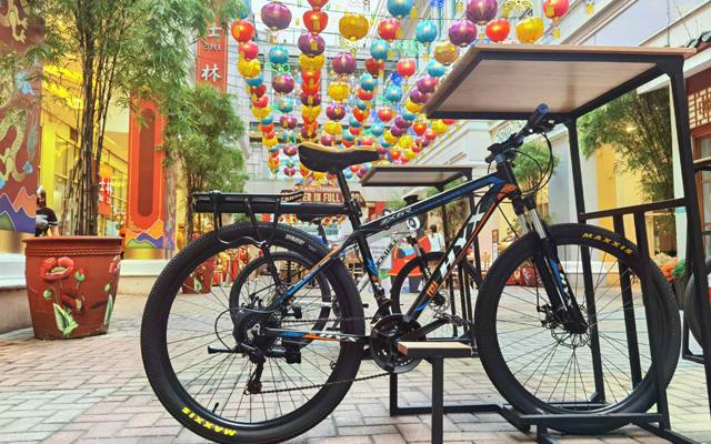 Lucky Chinatown bike parking