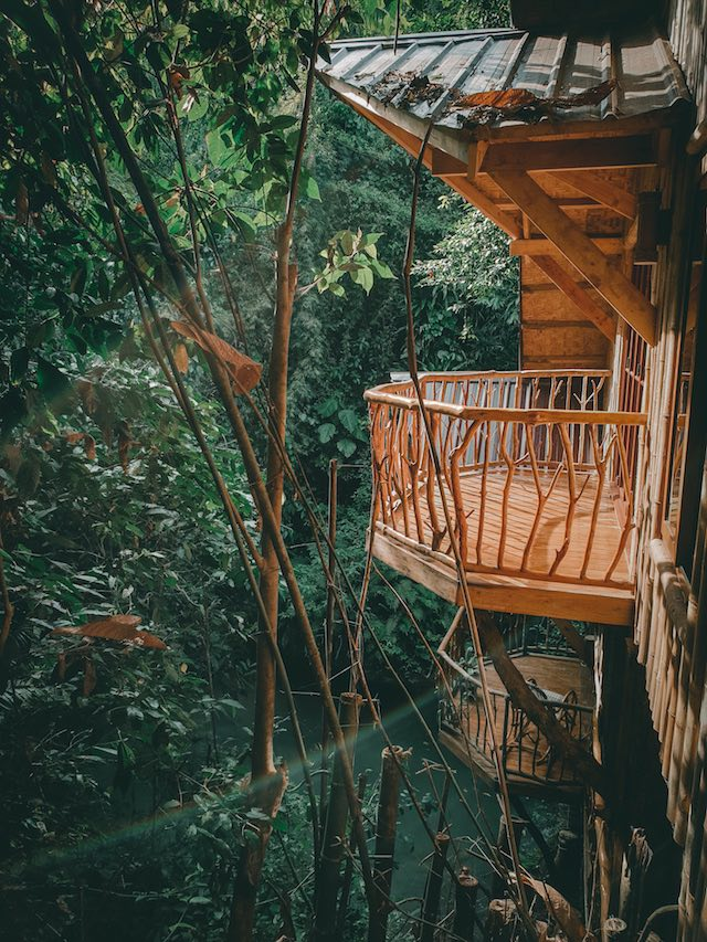 Treehouse De Valentine