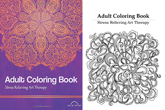 Adult Coloring Book: Stress Relieving Art Theraphy
