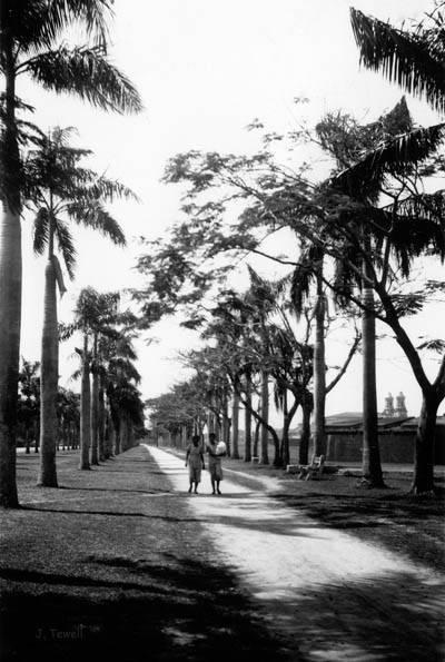 dewey-boulevard