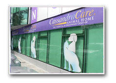 The Cassandra Care Animal Home Pet Hospital and Grooming Center