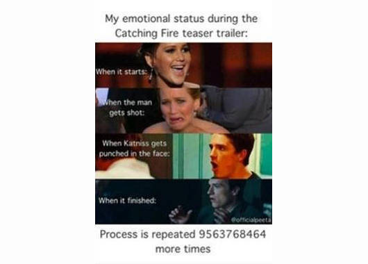 10 awesome memes inspired by catching fire spot 10 awesome memes inspired by catching fire voltagebd Gallery