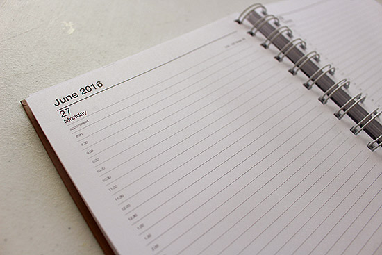 365 Days Twelve Months Daily 2016 Diary Design