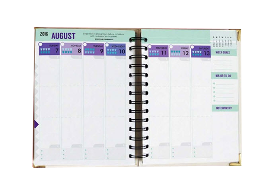 Design Your Life Back to Basic 2016 Planner from DYL Interior