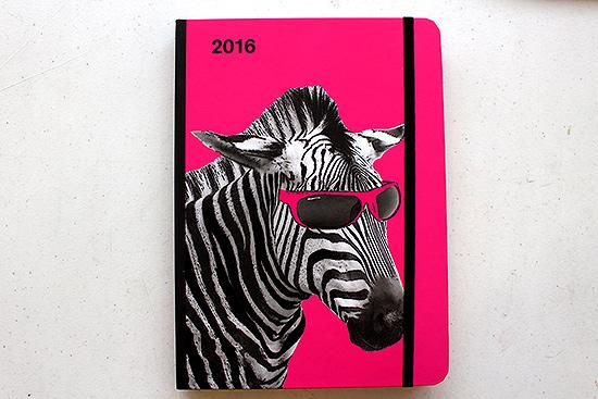 Nerdy Zebra