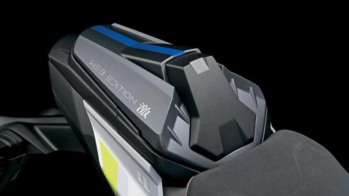 2022 Suzuki GSX-S1000 Passenger Seat Cowl
