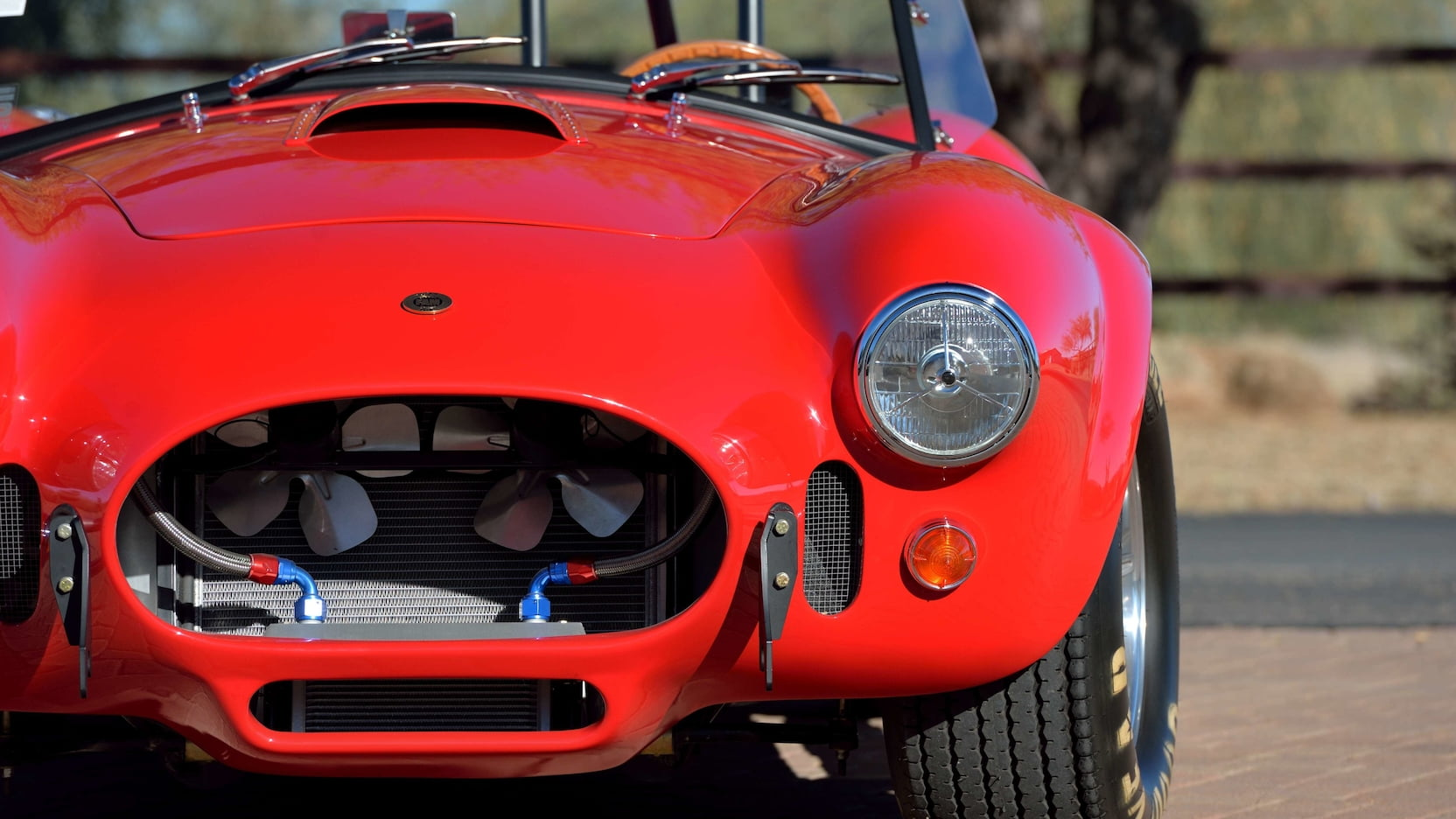 Shelby Cobra - Front Profile