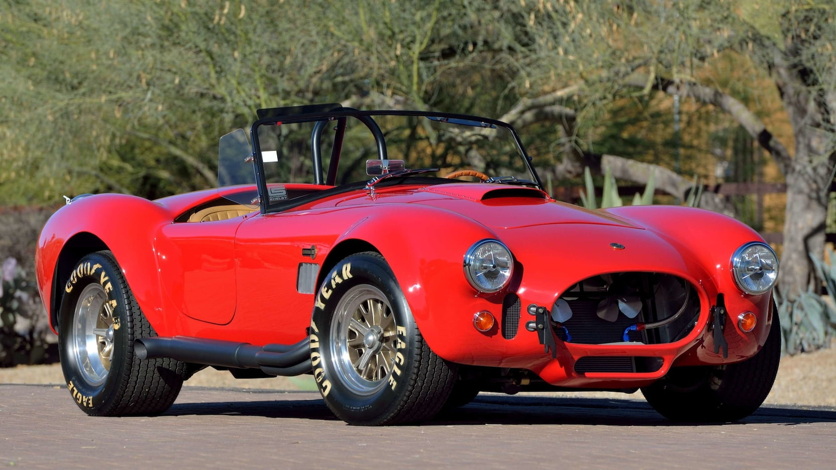 Shelby Cobra - Front Feature