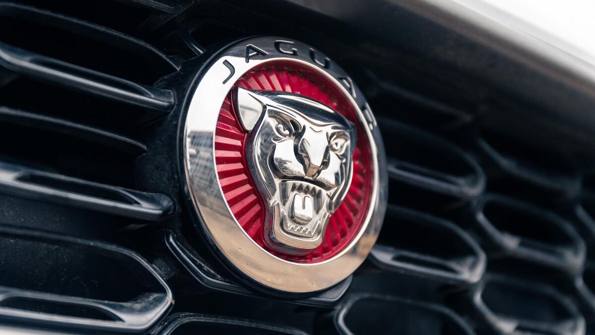 The Jaguar F-Type Emblem