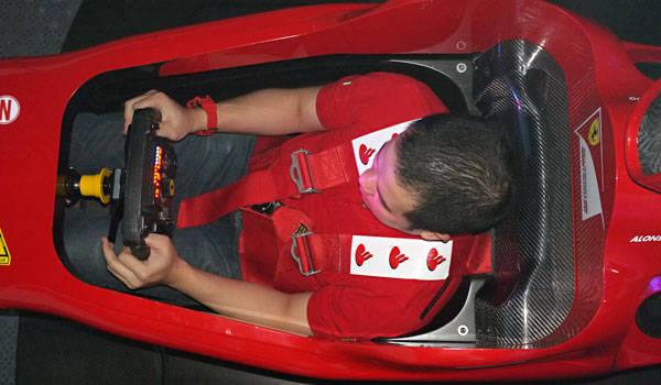 Shell Professional Simulator