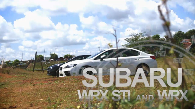 Subaru WRX and Subaru WRX STI