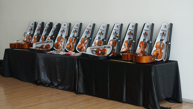 Volkswagen PH violin turnover