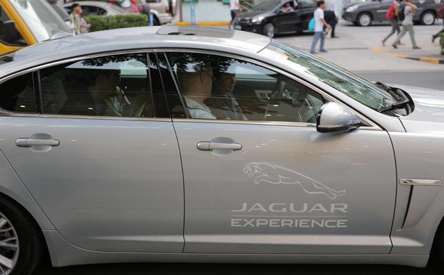 Globe Platinum - Jaguar