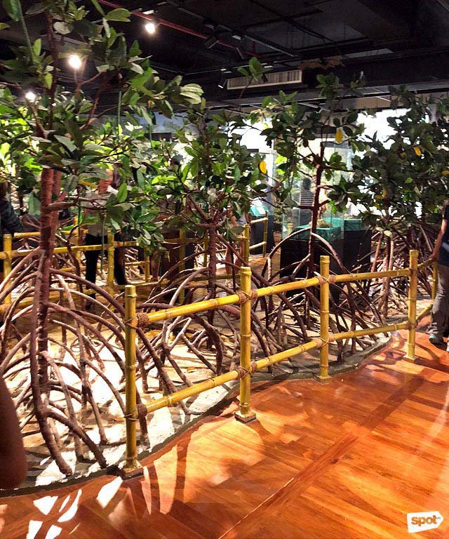 Inside the National Museum of Natural History - Must-See